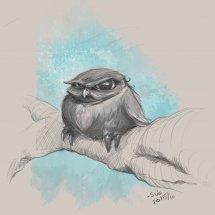 Esquisse oiseau